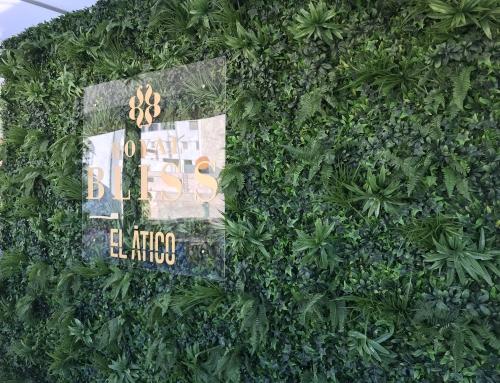 Jardín vertical RoyalBliss en El Ático NH